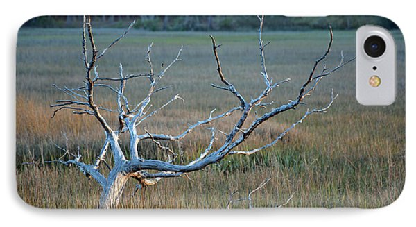 Elk-like Tree On Jekyll Island IPhone Case by Bruce Gourley