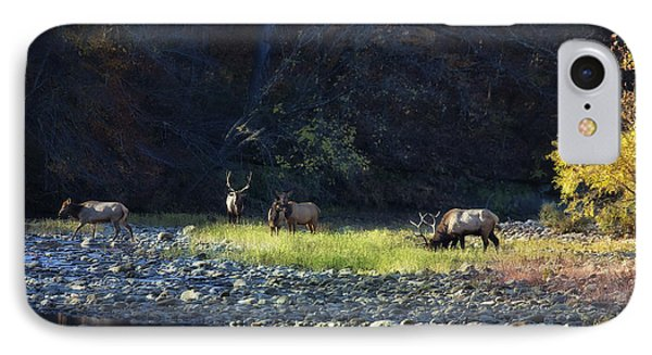 IPhone Case featuring the photograph Elk River Crossing At Sunrise by Michael Dougherty