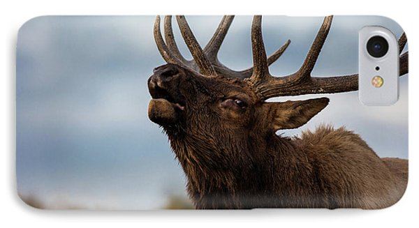 Elk's Screem IPhone Case