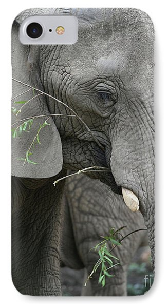 Elly At Lunch Phone Case by Karol Livote