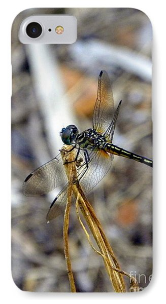 IPhone Case featuring the photograph Emerald Beauty by Terri Mills
