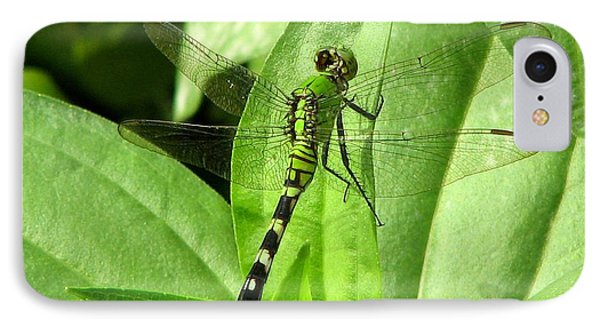 IPhone Case featuring the photograph Emerald Dragonfly by David Dunham