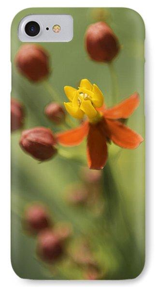 Emergence - Asclepias Curassavica - Butterfly Milkweed - South Carolina Botanical Gardens IPhone 7 Case by Johan Hakansson