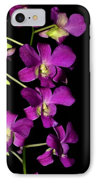 IPhone Case featuring the photograph Emma Queen Orchid 001 by George Bostian