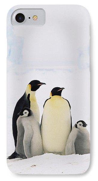 Emperor Penguin Aptenodytes Forsteri Phone Case by Konrad Wothe