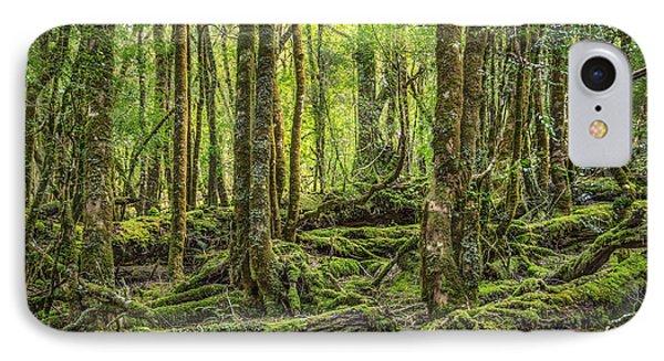 Enchanted Forest IPhone Case by Evelina Kremsdorf