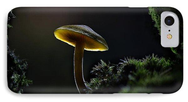 Enchanted Mushroom IPhone Case by Dirk Ercken