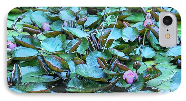 Painted Water Lilies IPhone Case by Theresa Tahara
