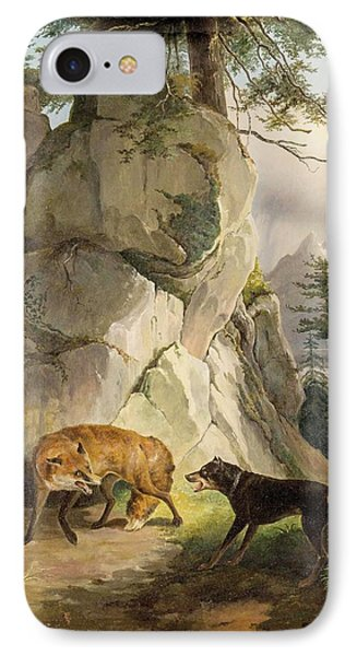Encounter Of Fox And Dog In Rocky Landscape IPhone Case