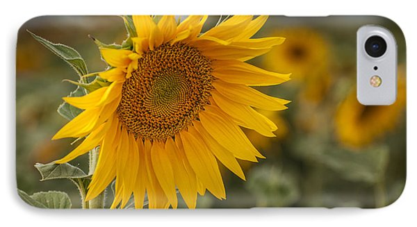 End Of The Day IPhone Case by Hernan Bua