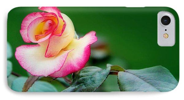 English Rose Phone Case by Lisa Knechtel