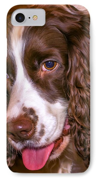 English Springer Spaniel - Paint IPhone Case by Steve Harrington