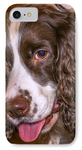English Springer Spaniel IPhone Case by Steve Harrington