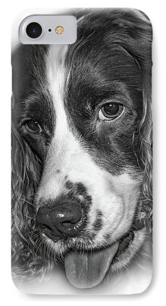 English Springer Spaniel - Vignette Bw IPhone Case by Steve Harrington