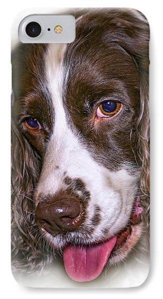 English Springer Spaniel - Vignette IPhone Case by Steve Harrington