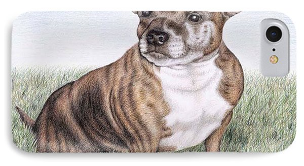 English Staffordshire Terrier Phone Case by Nicole Zeug