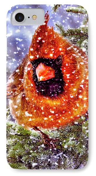 Enough Of This White Stuff IPhone Case by Diane Schuster