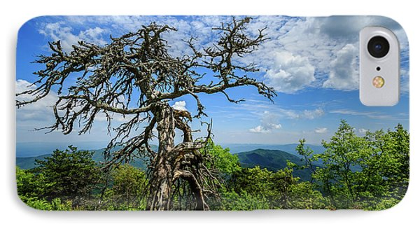Ent At The Top Of The Hill - Color IPhone Case by Joni Eskridge