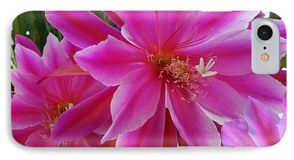 Epiphyllum Phone Case by Ellen Henneke