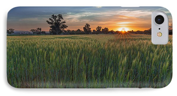 Equinox-first Sunrise Of Spring IPhone Case by Tim Bryan