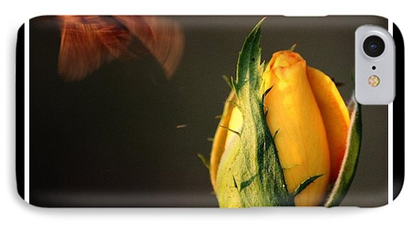 IPhone Case featuring the photograph Escape by KayeCee Spain