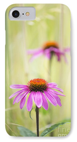 Essence Of Echinacea IPhone Case by Tim Gainey