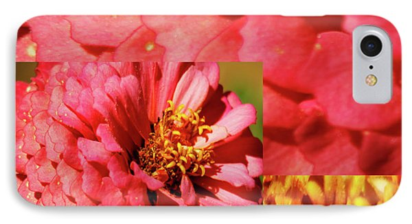 Essence Of Zinnia Flower IPhone Case by Carol F Austin