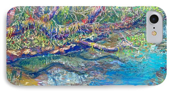 Estero River West Phone Case by Laurie Paci