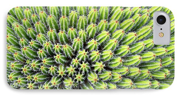 Euphorbia IPhone Case by Delphimages Photo Creations