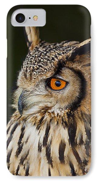 Eurasian Eagle-owl Bubo Bubo IPhone Case