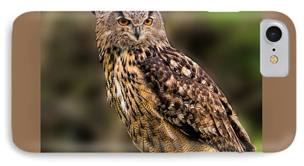 Eurasian Eagle Owl With A Cowboy Hat IPhone Case