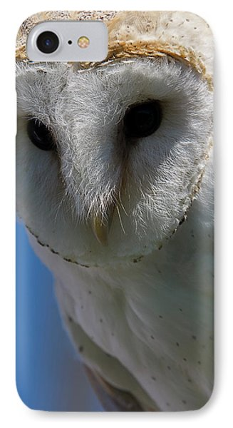 IPhone Case featuring the photograph European Barn Owl by JT Lewis