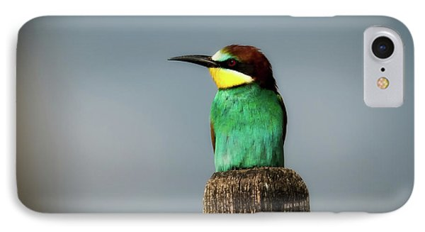 IPhone Case featuring the photograph European Bee Eater by Wolfgang Vogt