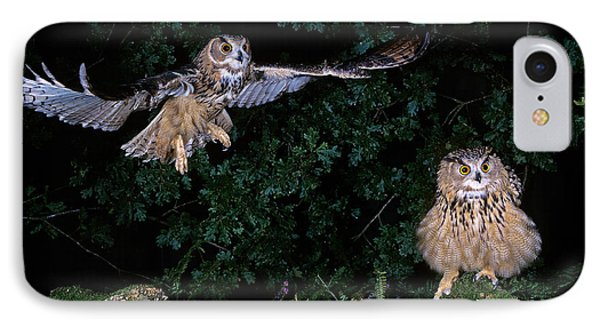 European Eagle Owl Bubo Bubo IPhone Case by Gerard Lacz