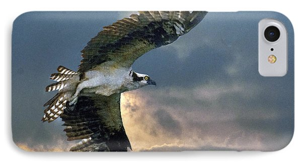 Evening Flight IPhone Case by Brian Tarr