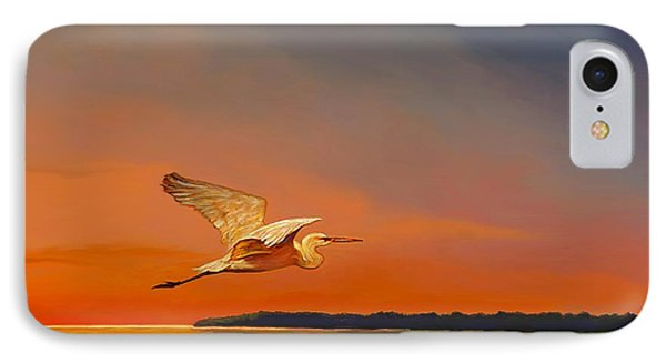 Evening Flight IPhone Case by David  Van Hulst