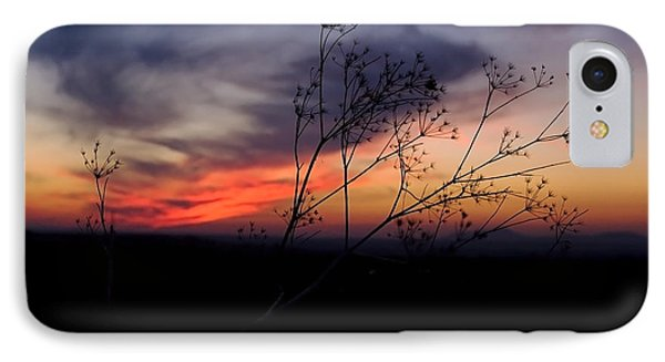 Evening Light Over Meadow IPhone Case
