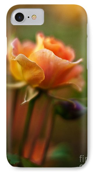Evening Rose IPhone Case by Mike Reid