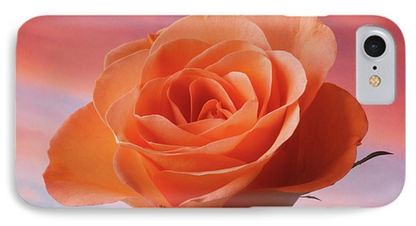 IPhone Case featuring the photograph Evening Rose by Terence Davis