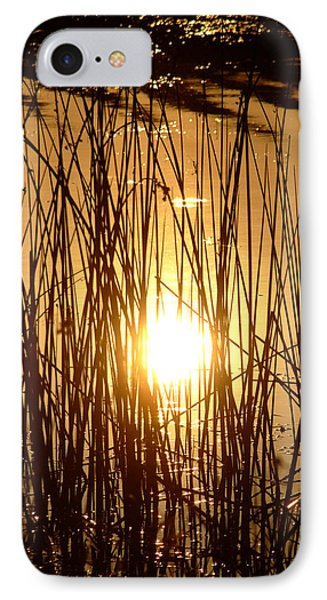 Evening Sunset Over Water IPhone Case