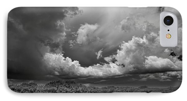 Everglades 0257bw IPhone Case