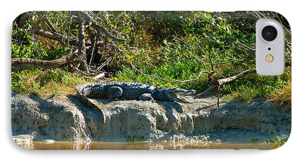 Everglades Crocodile Phone Case by David Lee Thompson