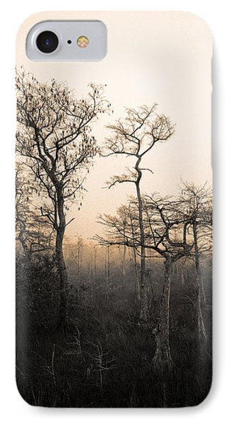 IPhone Case featuring the photograph Everglades Cypress Stand by Gary Dean Mercer Clark
