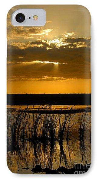 Everglades Evening Phone Case by David Lee Thompson