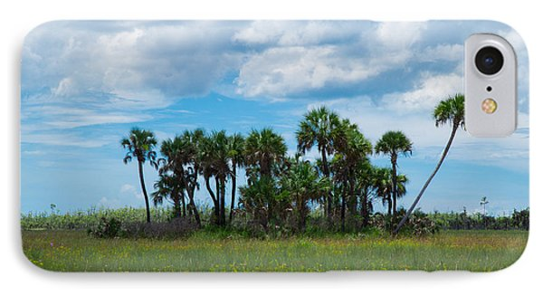 Everglades Landscape IPhone Case by Christopher L Thomley