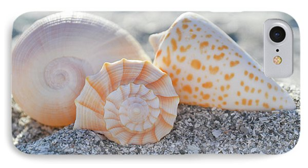 IPhone Case featuring the photograph Every Shell Has A Story by Melanie Moraga