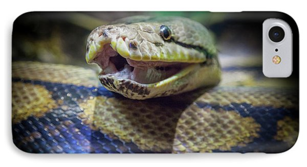 Boa Constrictor iPhone 7 Case - Evil In The Garden by Karen Wiles