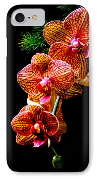 IPhone Case featuring the photograph Exotic Cascade Of Orchids by Julie Palencia