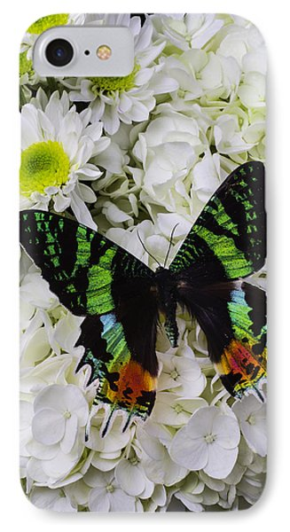 Exotic Green Butterfly IPhone Case by Garry Gay