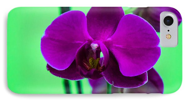Exposed Orchid IPhone Case